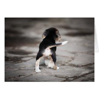 Parte inferior del beagle del bebé tarjeta de felicitación
