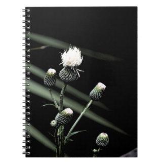 parte posterior blanca de la oscuridad del brote notebook