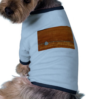 Parte posterior de la guitarra con el modelo gris  camiseta con mangas para perro