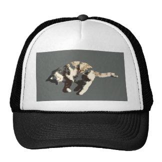 parte posterior posterized del gris del gato de ca gorros bordados
