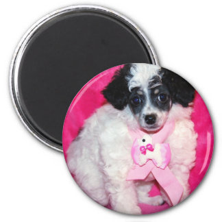 Parti Poodle Puppy in Pink 2 Inch Round Magnet