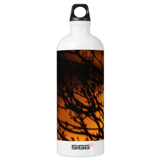 Partial Lunar Eclipse Silhouette Water Bottle