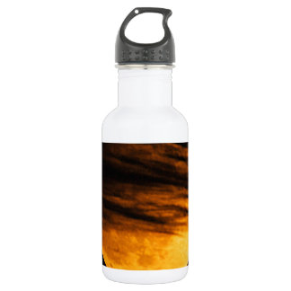 Partial Lunar Eclipse Stainless Steel Water Bottle