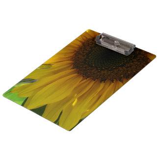 Partial Sunflower Clipboards