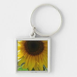 Partial Sunflower Key Chain