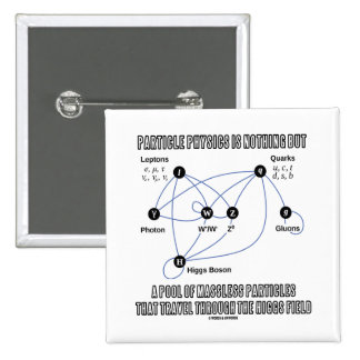Particle Physics Is Nothing But A Pool Of Massless Pinback Button
