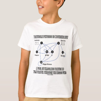 Particle Physics Is Nothing But A Pool Of Massless T-Shirt