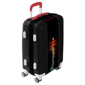 Particle-Wave Duality Luggage