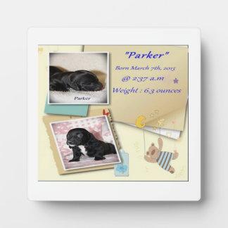 Partida de nacimiento de Parkers Placas Para Mostrar