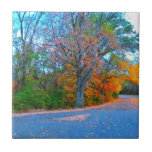 ¡Partida impresionante del día del otoño! Teja Cerámica