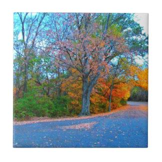 ¡Partida impresionante del día del otoño! Azulejo Cuadrado Pequeño