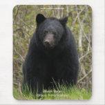 Partidario Mousepad de la fauna del oso negro Alfombrilla De Ratones