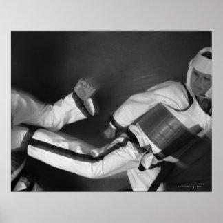 Partido del Taekwondo Póster