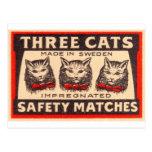 Partidos de seguridad de los gatos del vintage postal