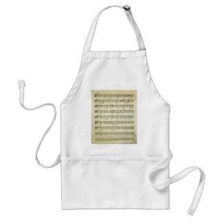 Partitura del vintage, partitura musical antigua delantal