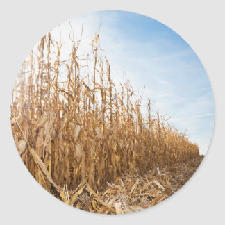 Partly Harvested Corn Field Classic Round Sticker