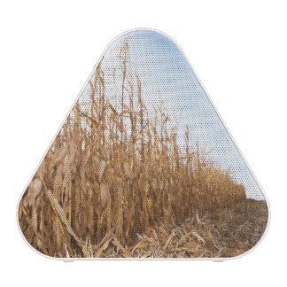 Partly Harvested Corn Field Speaker