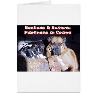 Partners - adentro - crimen tarjetón