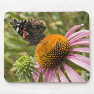 partnership symbiotic helping beauty mouse pad