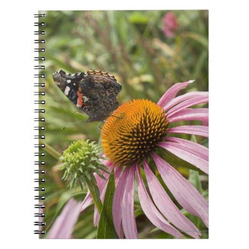 partnership, symbiotic, helping, beauty, spiral notebook