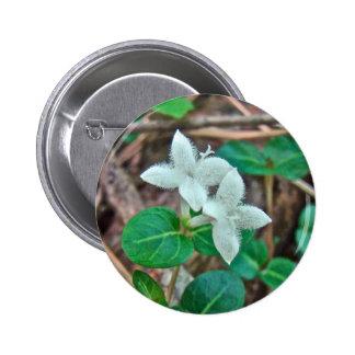 Partridge Berry Wildflower Button