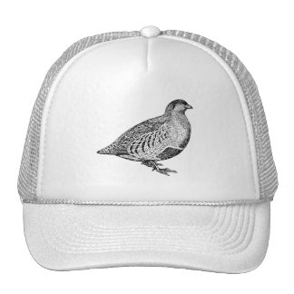 Partridge Bird Art Trucker Hat