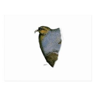 partridge bird, tony fernandes postcard