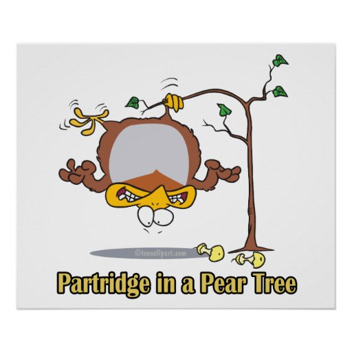 partridge in a pear tree 1st first day christmas poster