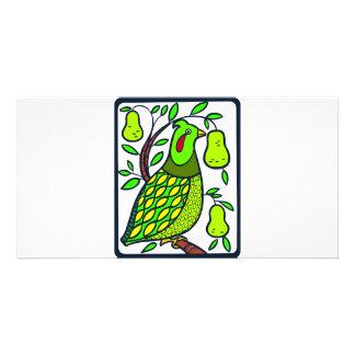 Partridge in Pear Tree Card