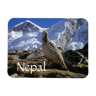 Partridge in the Himalayas Magnet