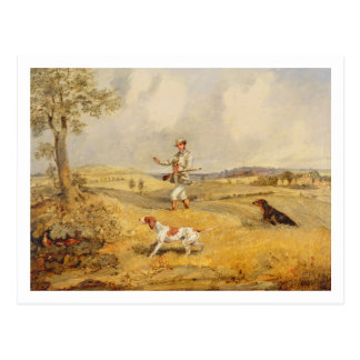 Partridge Shooting (oil on panel) Postcard