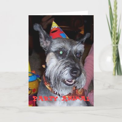 Party Animal, Birthday Card from Zazzle.com
