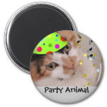 Party Animal/Calico Cat Refrigerator Magnet