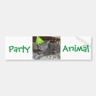 Party Animal Gray Cat Bumper Stickers
