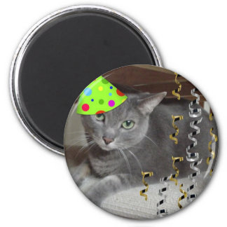 Party Animal Gray Cat Magnet