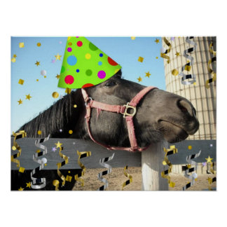 Party Animal Horse Poster