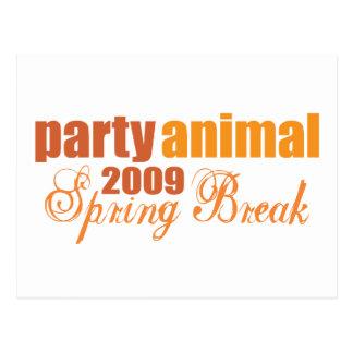 party animal spring break 2009 postcard
