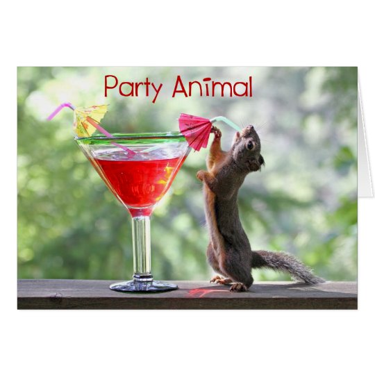 Party Animal Squirrel Card