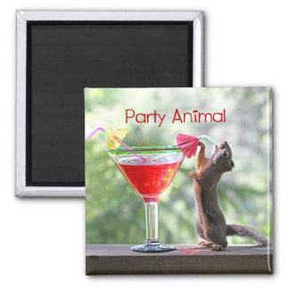 Party Animal Squirrel Fridge Magnets