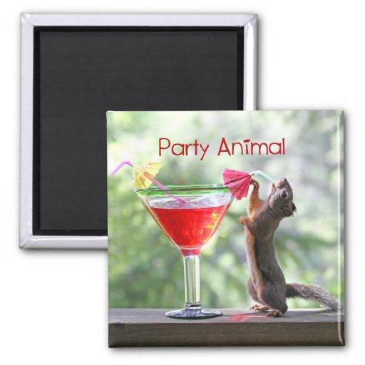Party Animal Squirrel Fridge Magnets