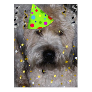 Party Animal Wheaton Terrier Postcard