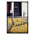 Party Beads in New Orleans Photo Art