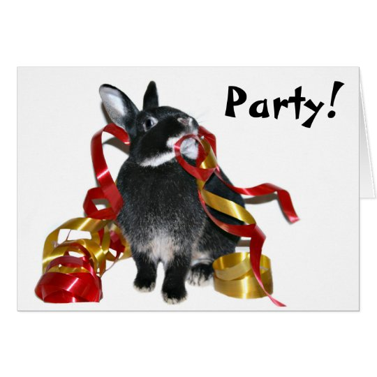 Party bunny card