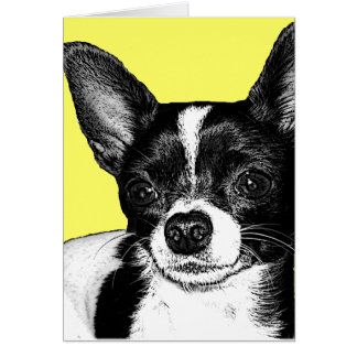 Party Chihuahua Card