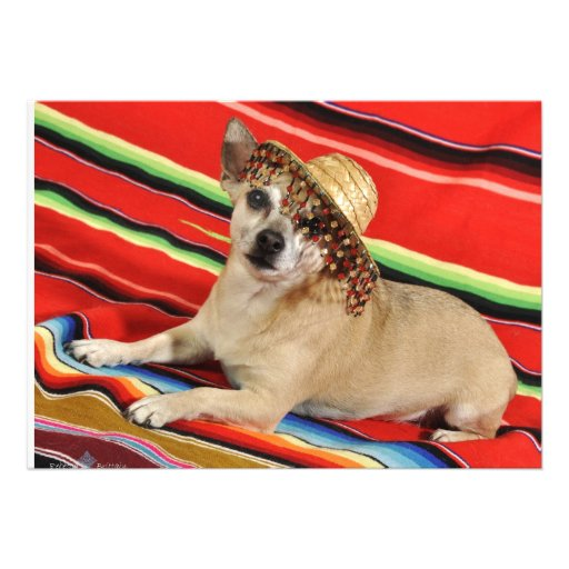 Party Chihuahua Personalized Announcement