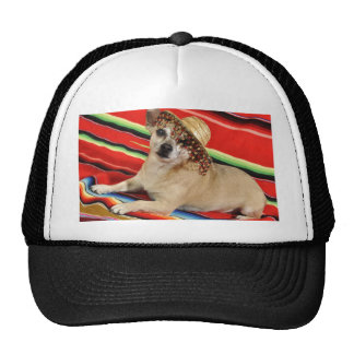 Party Chihuahua Trucker Hat