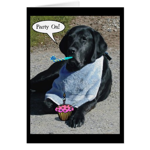 """Party Dog Card - """"Boone"""""""