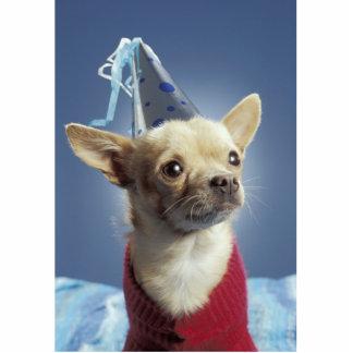 Party Dog Photo Sculpture