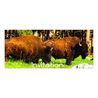 Party Invitation/