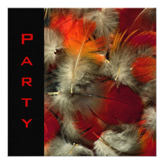 Party Invitation All Occasions Feathers Black Red Invite